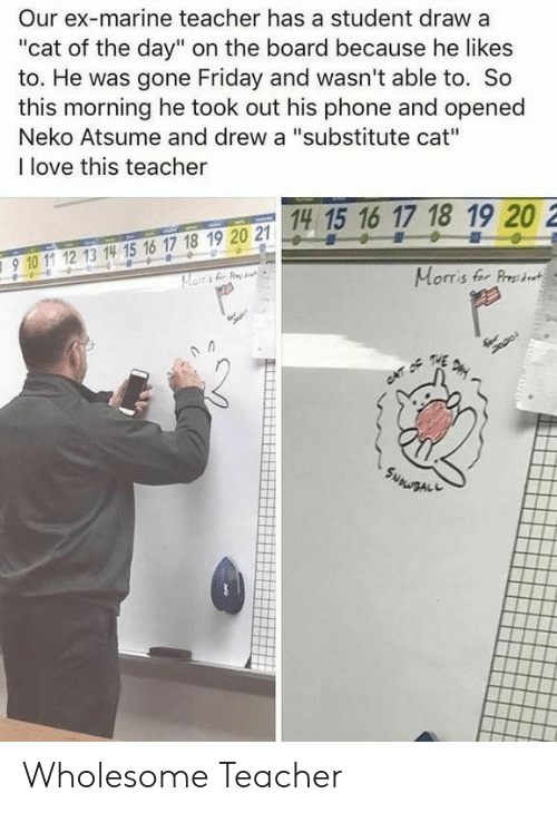 """Friday, Love, and Phone: Our ex-marine teacher has a student draw a  """"cat of the day"""" on the board because he likes  to. He was gone Friday and wasn't able to. So  this morning he took out his phone and opened  Neko Atsume and drew a """"substitute cat""""  I love this teacher  14 15 16 17 18 19 20 2  15 1  910 11 12 13 14 15 16 17 18 19 20 2  910 1 12 13 14 15 16 17 18 19 20 21  Morris fer Prst Wholesome Teacher"""