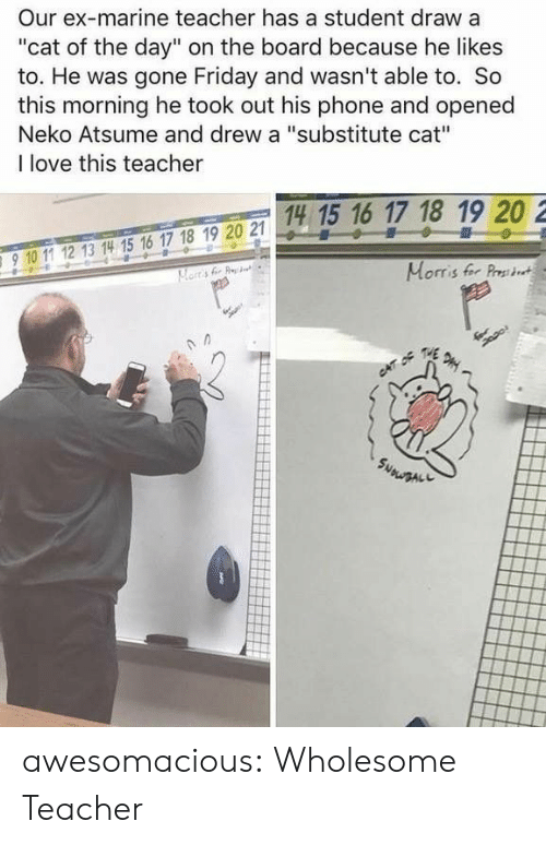 "Friday, Love, and Phone: Our ex-marine teacher has a student draw a  ""cat of the day"" on the board because he likes  to. He was gone Friday and wasn't able to. So  this morning he took out his phone and opened  Neko Atsume and drew a ""substitute cat""  I love this teacher  14 15 16 17 18 19 20 2  15 1  910 11 12 13 14 15 16 17 18 19 20 2  910 1 12 13 14 15 16 17 18 19 20 21  Morris fer Prst awesomacious:  Wholesome Teacher"