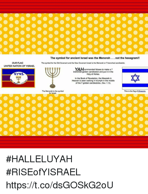 Our Flag United Nation Of Yisrael The Symbol For Ancient Israel Was