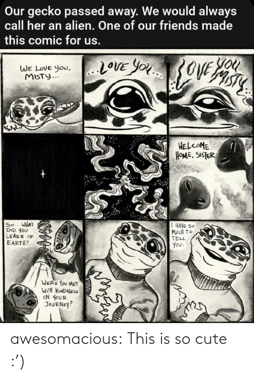Cute, Friends, and Journey: Our gecko passed away. We would always  call her an alien. One of our friends made  this comic for us.  You  20VE YOU3OVE  WE LOVE you,..LOVE YOu  WE LOVE You,  MISTY...  HELCOME  HOME, SISTER  So... WHAT  DID YOU  LEARN OF  EARTH?  I HAVE SO  MucH TO  TELL  You.  WERE YOU MET  WITH KINDNESS  ON YOUR  JOURNEY? awesomacious:  This is so cute :')