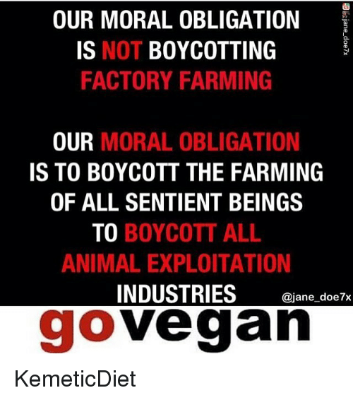 OUR MORAL OBLIGATION IS NOT BOYCOTTING FACTORY FARMING OUR