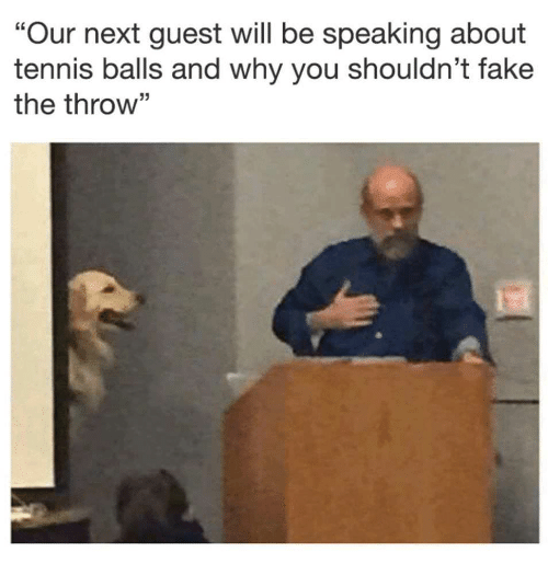 """Fake, Tennis, and Next: """"Our next guest will be speaking about  tennis balls and why you shouldn t fake  the throw"""""""