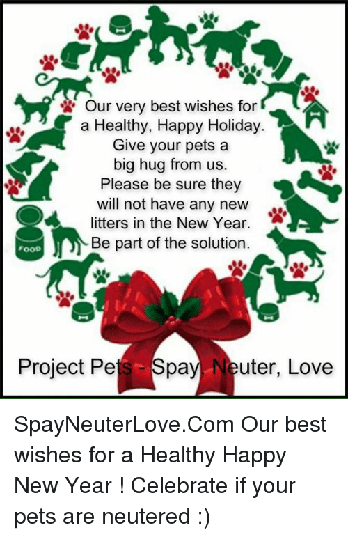 Our Very Best Wishes for AA a Healthy Happy Holiday Give Your Pets a ...