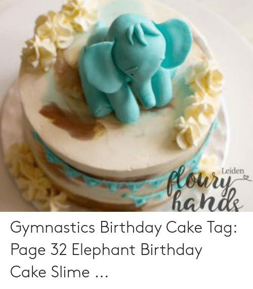 Sensational Oury Hahs Leiden Gymnastics Birthday Cake Tag Page 32 Elephant Personalised Birthday Cards Bromeletsinfo