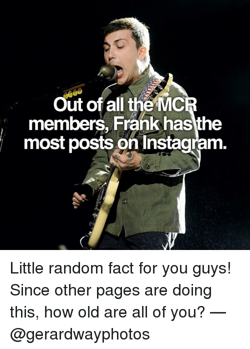Memes, 🤖, and Mcr: Out of all the MCR  members, Frank hasthe  most posts on Instagram. Little random fact for you guys! Since other pages are doing this, how old are all of you? — @gerardwayphotos