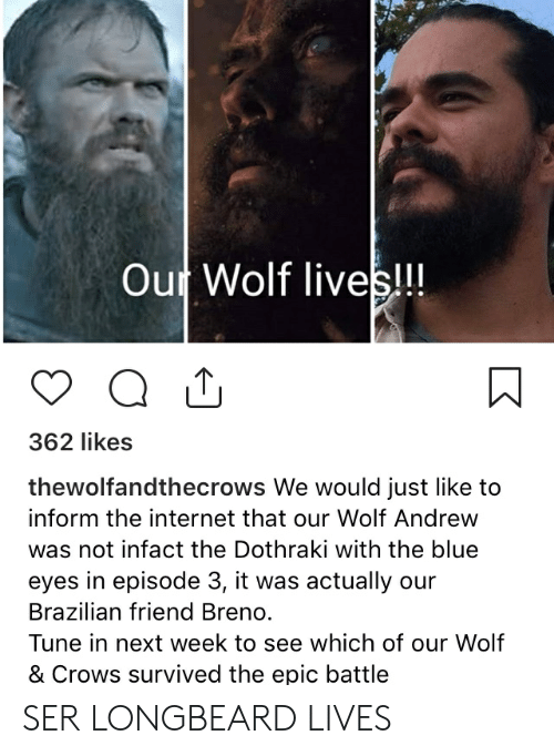Internet, Blue, and Wolf: Out Wolf lives!!!  362 likes  thewolfandthecrows We would just like to  inform the internet that our Wolf Andrew  was not infact the Dothraki with the blue  eyes in episode 3, it was actually our  Brazilian friend Breno.  Tune in next week to see which of our Wolf  & Crows survived the epic battle SER LONGBEARD LIVES