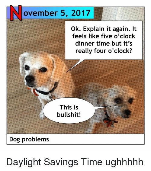 Ovember 5 2017 Ok Explain It Again It Feels Like Five O Clock Dinner Time But It S Really Four O Clock This Is Bullshit Dog Problems Daylight Savings Time Meme On Me Me
