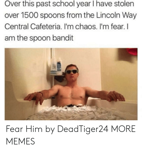 Dank, Memes, and School: Over this past school year I have stolen  over 1500 spoons from the Lincoln Way  Central Cafeteria. I'm chaos. I'm fear. l  am the spoon bandit Fear Him by DeadTiger24 MORE MEMES