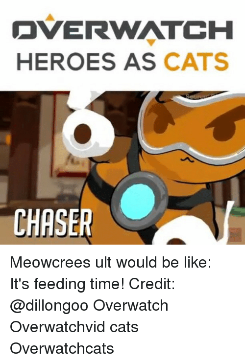 Memes, 🤖, and Overwatch: OVER WATCH  HEROES AS  CATS  CHASER Meowcrees ult would be like: It's feeding time! Credit: @dillongoo Overwatch Overwatchvid cats Overwatchcats