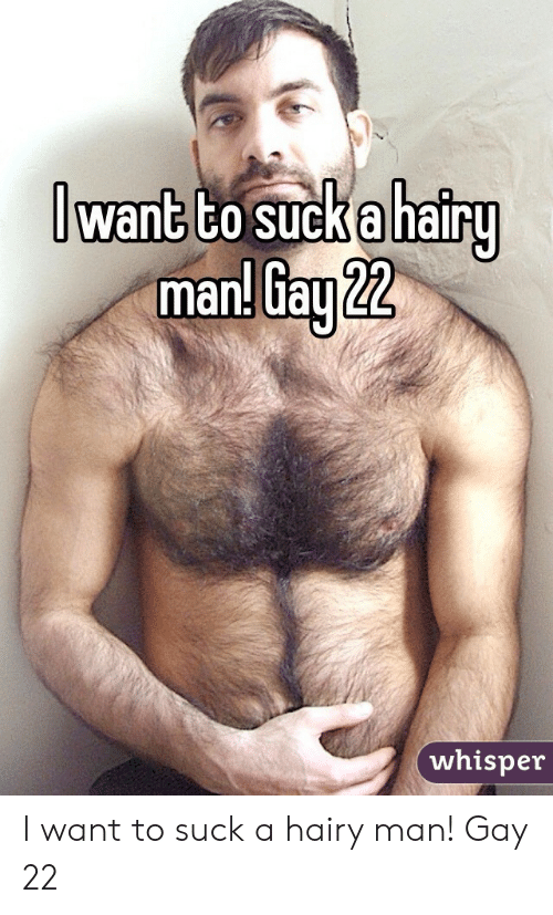 gay hairy asshole