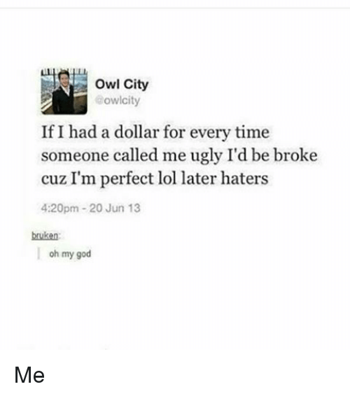 owl city aowlcity if i had a dollar for every 10072055 ✅ 25 best memes about owl city owl city memes