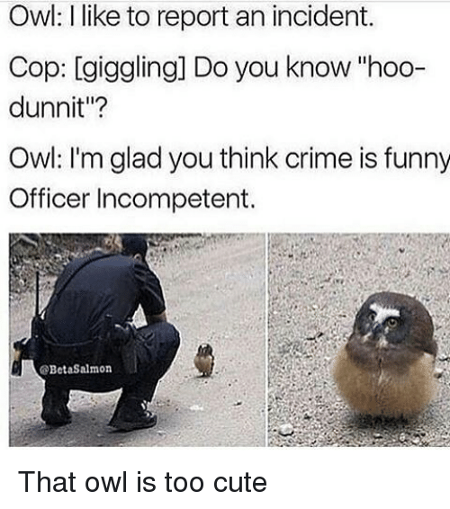 "Memes, 🤖, and Owl: Owl: I like to report an incident.  Cop: giggling Do you know hoo-  dunnit""?  Owl: I'm glad you think crime is funny  Officer Incompetent.  BetaSalmon That owl is too cute"