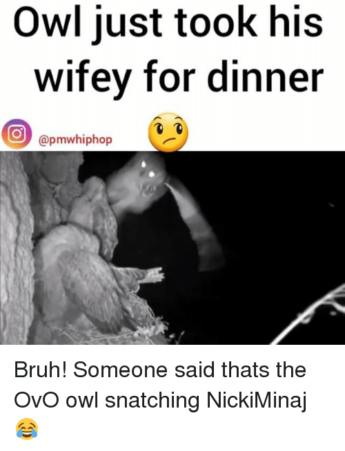 Memes, Snatched, and 🤖: Owl just took his  wifey for dinner  O pmwhiphop Bruh! Someone said thats the OvO owl snatching NickiMinaj 😂