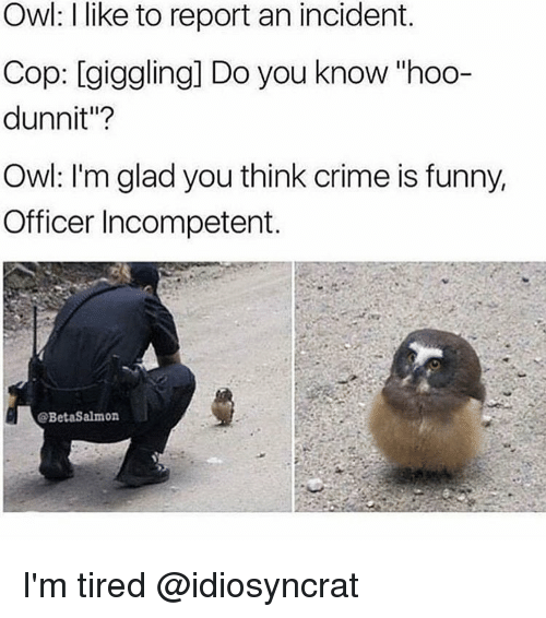 """Memes, 🤖, and Cops: Owl: like to report an incident.  Cop: giggling] Do you know hoo-  dunnit""""?  Owl: I'm glad you think crime is funny,  Officer Incompetent.  @BetaSalmon I'm tired @idiosyncrat"""