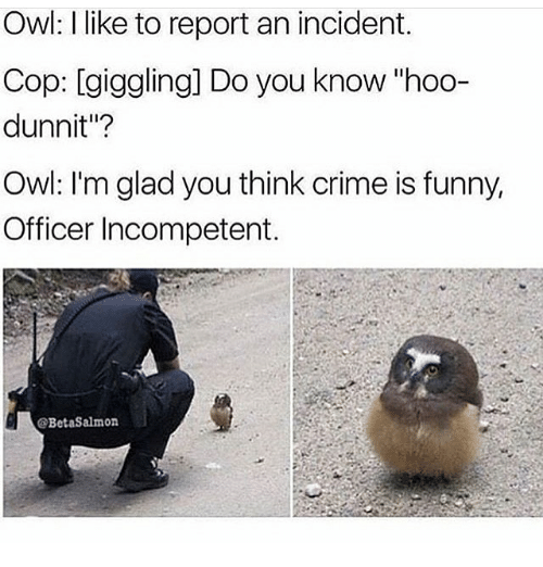 """Memes, 🤖, and Cops: Owl: like to report an incident.  Cop: giggling] Do you know """"hoo-  dunnit""""?  Owl: I'm glad you think crime is funny,  Officer Incompetent.  @BetaSalmon"""