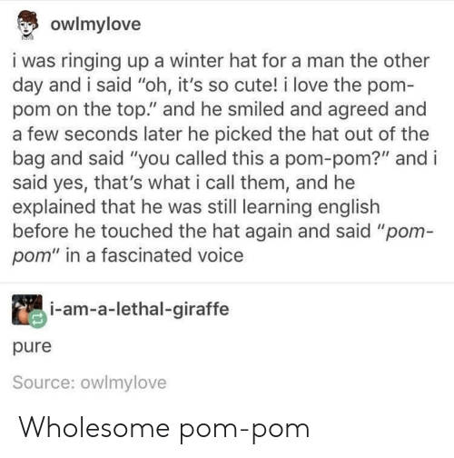 """Cute, Love, and Winter: owlmylove  i was ringing up a winter hat for a man the other  day and i said """"oh, it's so cute! i love the pom-  pom on the top."""" and he smiled and agreed and  a few seconds later he picked the hat out of the  bag and said """"you called this a pom-pom?"""" and i  said yes, that's what i call them, and he  explained that he was still learning english  before he touched the hat again and said """"pom-  pom"""" in a fascinated voice  i-am-a-lethal-giraffe  pure  Source: owlmylove Wholesome pom-pom"""