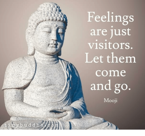 Oy B U D D H Feelings Are Just Visitors Let Them Come and Go Mooji