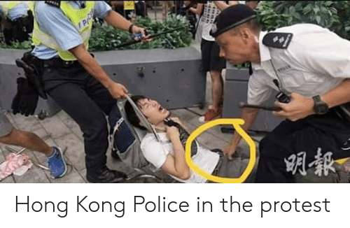Police, Protest, and Hong Kong: P Hong Kong Police in the protest
