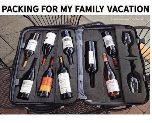packing for my family vacation ovewine 24725741 ✅ 25 best memes about family vacation family vacation memes