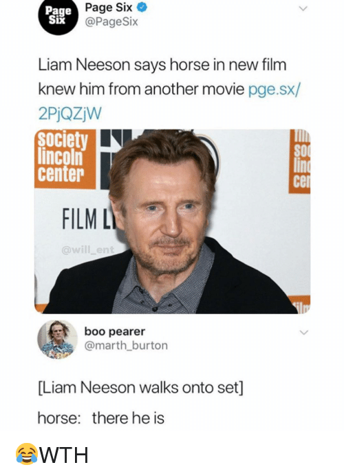 Boo, Liam Neeson, and Memes: Page  Six  IX  Page Six  @PageSix  Liam Neeson savs horse in new film  knew him from another movie pge.sx/  2PjQzjW  Society  lincoln  center  cel  FILM L  @will_ent  boo pearer  @marth burton  [Liam Neeson walks onto set]  horse: there he is 😂WTH