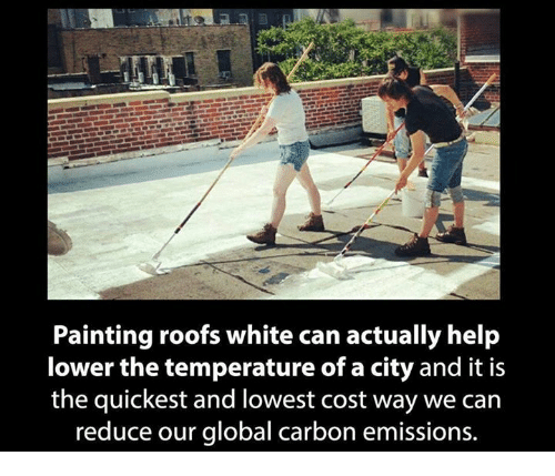 Memes, Help, and White: Painting roofs white can actually help  lower the temperature of a city and it is  the quickest and lowest cost way we can  reduce our global carbon emissions.