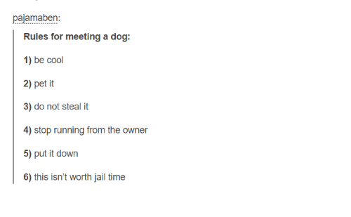 Jail, Cool, and Time: pajamaben  Rules for meeting a dog:  1) be cool  2) pet it  3) do not steal it  5) put it down  6) this isn't worth jail time