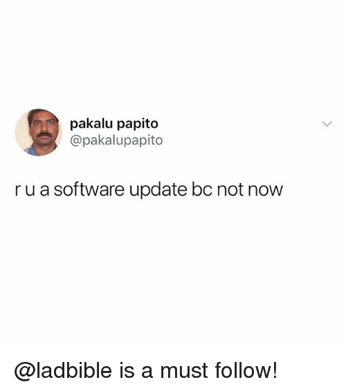Funny, Meme, and Software: pakalu papito  @pakalupapito  r u a software update bc not now @ladbible is a must follow!