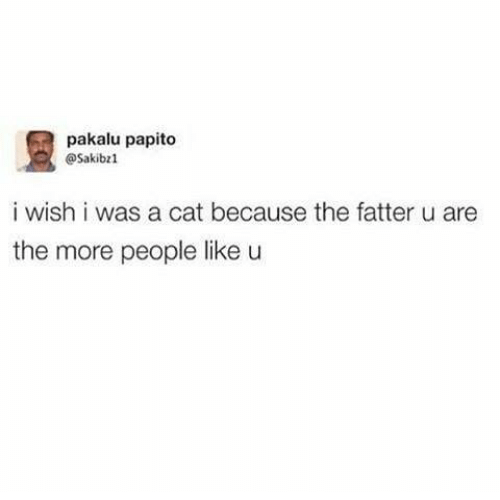 Memes, 🤖, and Cat: pakalu papito  @Sakibz  i wish i was a cat because the fatter u are  the more people like