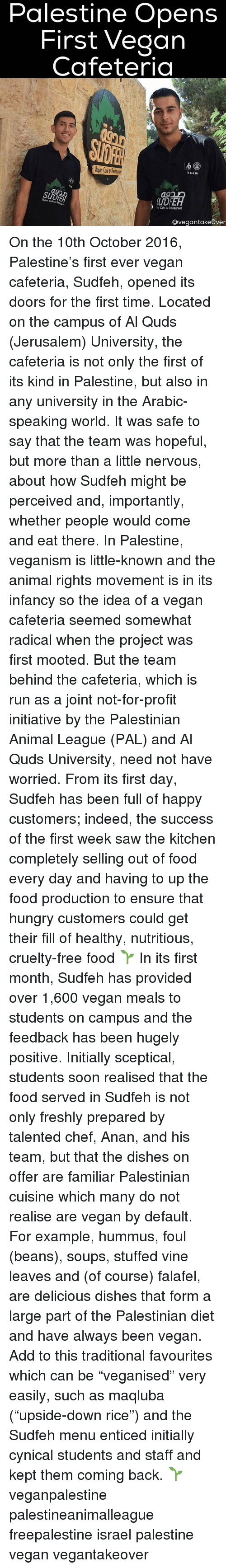 "Memes, Cynical, and Dish: Palestine Opens  First Vegan  Cafeteria  Team  Vegan Cafe 6  Cafe &lestaurant  Ovegantakeover On the 10th October 2016, Palestine's first ever vegan cafeteria, Sudfeh, opened its doors for the first time. Located on the campus of Al Quds (Jerusalem) University, the cafeteria is not only the first of its kind in Palestine, but also in any university in the Arabic-speaking world. It was safe to say that the team was hopeful, but more than a little nervous, about how Sudfeh might be perceived and, importantly, whether people would come and eat there. In Palestine, veganism is little-known and the animal rights movement is in its infancy so the idea of a vegan cafeteria seemed somewhat radical when the project was first mooted. But the team behind the cafeteria, which is run as a joint not-for-profit initiative by the Palestinian Animal League (PAL) and Al Quds University, need not have worried. From its first day, Sudfeh has been full of happy customers; indeed, the success of the first week saw the kitchen completely selling out of food every day and having to up the food production to ensure that hungry customers could get their fill of healthy, nutritious, cruelty-free food 🌱 In its first month, Sudfeh has provided over 1,600 vegan meals to students on campus and the feedback has been hugely positive. Initially sceptical, students soon realised that the food served in Sudfeh is not only freshly prepared by talented chef, Anan, and his team, but that the dishes on offer are familiar Palestinian cuisine which many do not realise are vegan by default. For example, hummus, foul (beans), soups, stuffed vine leaves and (of course) falafel, are delicious dishes that form a large part of the Palestinian diet and have always been vegan. Add to this traditional favourites which can be ""veganised"" very easily, such as maqluba (""upside-down rice"") and the Sudfeh menu enticed initially cynical students and staff and kept them coming back. 🌱 veganpalestine palestineanimalleague freepalestine israel palestine vegan vegantakeover"