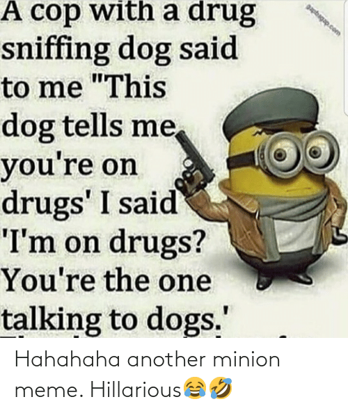 """Dogs, Drugs, and Meme: papbagap.com  A cop with a drug  sniffing dog said  to me """"This  dog tells me,  you're on  drugs' I said  """"I'm on drugs?  You're the one  talking to dogs."""" Hahahaha another minion meme. Hillarious😂🤣"""