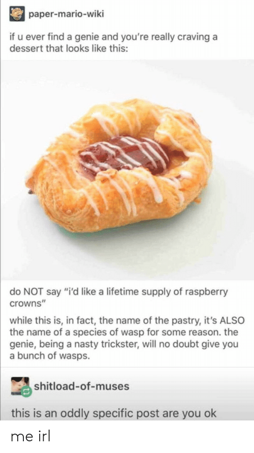 """Nasty, Mario, and Dessert: paper-mario-wiki  if u ever find a genie and you're really craving a  dessert that looks like this:  do NOT say """"i'd like a lifetime supply of raspberry  crowns""""  while this is, in fact, the name of the pastry, it's ALSO  the name of a species of wasp for some reason. the  genie, being a nasty trickster, will no doubt give you  a bunch of wasps.  shitload-of-muses  this is an oddly specific post are you ok me irl"""