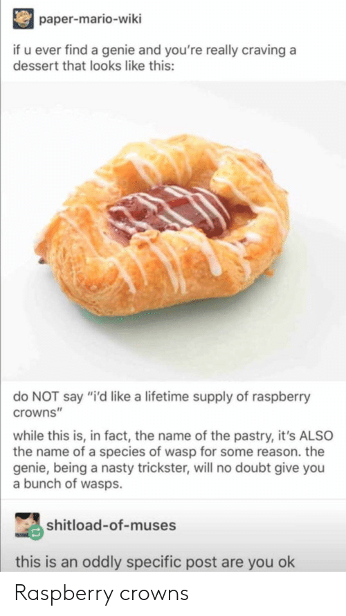 """Nasty, Mario, and Dessert: paper-mario-wiki  if u ever find a genie and you're really craving a  dessert that looks like this:  do NOT say """"i'd like a lifetime supply of raspberry  crowns""""  while this is, in fact, the name of the pastry, it's ALSO  the name of a species of wasp for some reason. the  genie, being a nasty trickster, will no doubt give you  a bunch of wasps.  shitload-of-muses  this is an oddly specific post are you ok Raspberry crowns"""