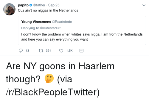 Blackpeopletwitter, Netherlands, and Can: papito@father Sep 25  Cuz ain't no niggas in the Netherlands  Young Vinexmens @Raadstede  Replying to @cutestadult  I don't know the problem when whites says nigga. I am from the Netherlands  and here you can say everything you want  391 <p>Are NY goons in Haarlem though? 🤔 (via /r/BlackPeopleTwitter)</p>