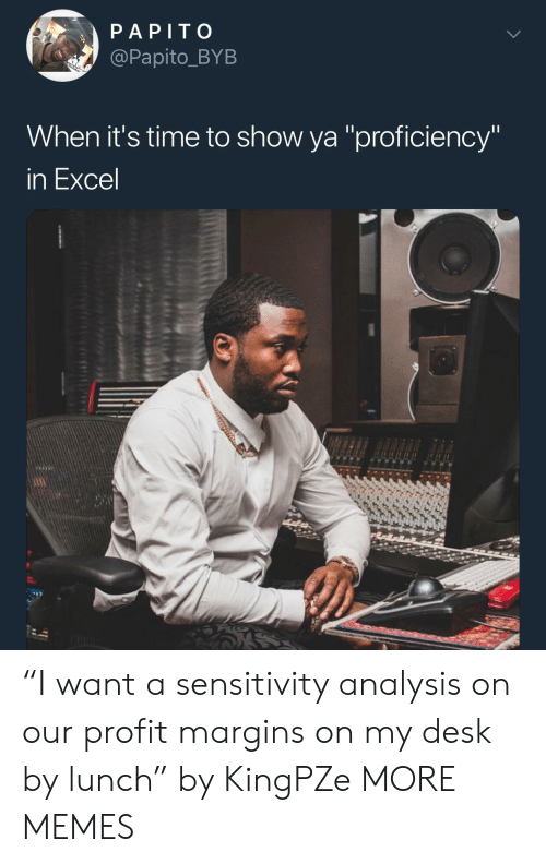"Dank, Memes, and Target: PAPITO  @Papito_BYB  When it's time to show ya ""proficiency'  In Excel ""I want a sensitivity analysis on our profit margins on my desk by lunch"" by KingPZe MORE MEMES"