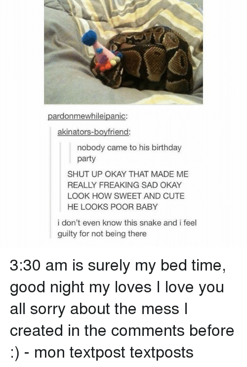 Birthday, Cute, and Love: pardonmewhileipanic:  akinators-boyfriend:  nobody came to his birthday  party  SHUT UP OKAY THAT MADE ME  REALLY FREAKING SAD OKAY  LOOK HOW SWEET AND CUTE  HE LOOKS POOR BABY  i don't even know this snake and i feel  guilty for not being there 3:30 am is surely my bed time, good night my loves I love you all sorry about the mess I created in the comments before :) - mon textpost textposts