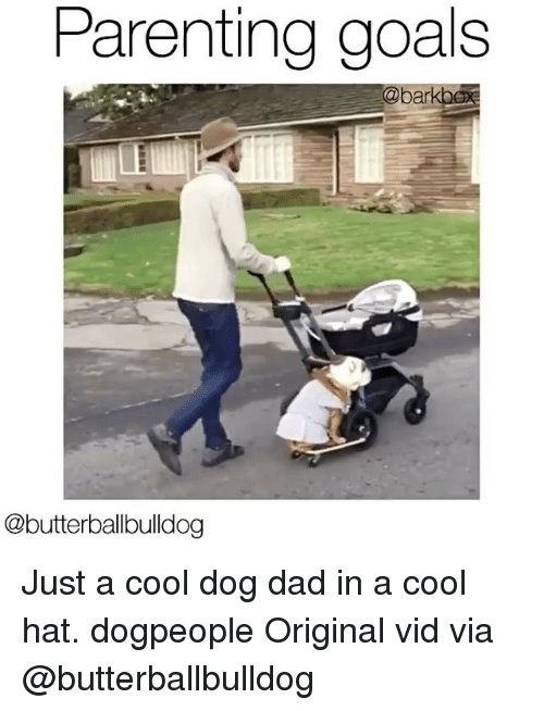 parenting goals ba butterballbulldog just a cool dog dad in 14695881 ✅ 25 best memes about cool dog cool dog memes,Dog Dad Meme
