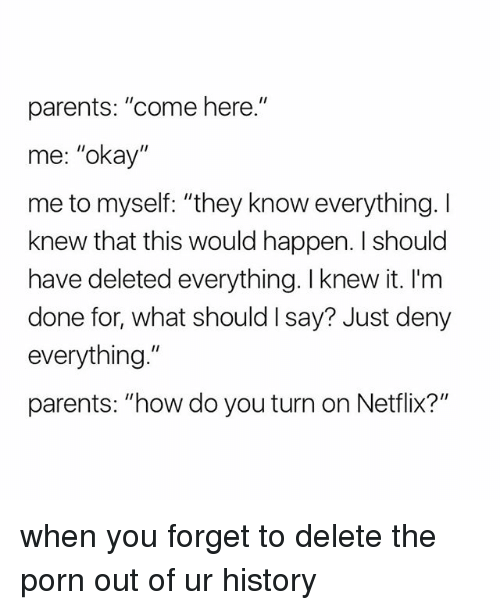 "Netflix, Parents, and History: parents: ""come here.""  me: ""okay""  me to myself: ""they know everything. I  knew that this would happen. I should  have deleted everything. I knew it. I'm  done for, what should I say? Just deny  everything.""  parents: ""how do you turn on Netflix?"" when you forget to delete the porn out of ur history"