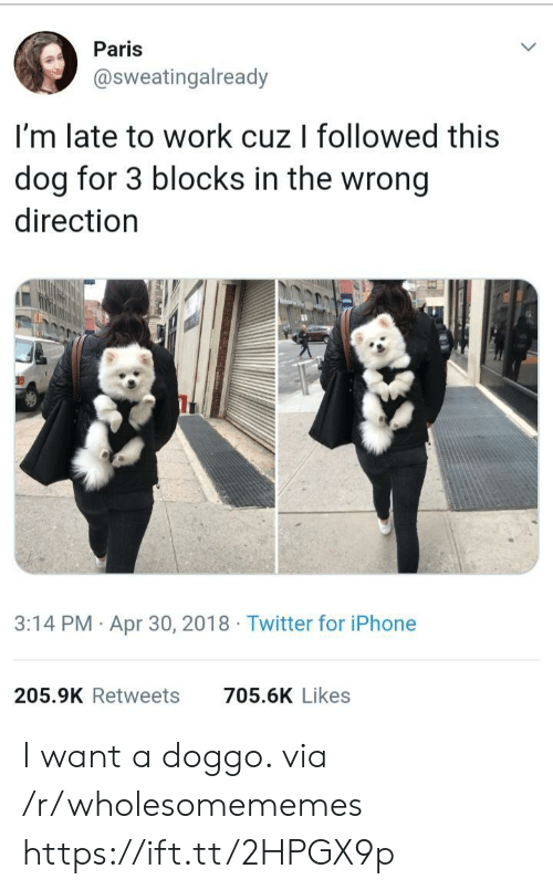 Iphone, Twitter, and Work: Paris  @sweatingalready  I'm late to work cuz I followed this  dog for 3 blocks in the wrong  direction  3:14 PM Apr 30, 2018 Twitter for iPhone  205.9K Retweets  705.6K Likes I want a doggo. via /r/wholesomememes https://ift.tt/2HPGX9p