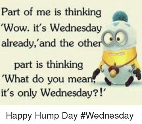Hump Day, Memes, and Wow: Part of me is thinking  'Wow. it's Wednesday  already, and the other  part is thinking  'What do you mean  it's only Wednesday?!' Happy Hump Day #Wednesday
