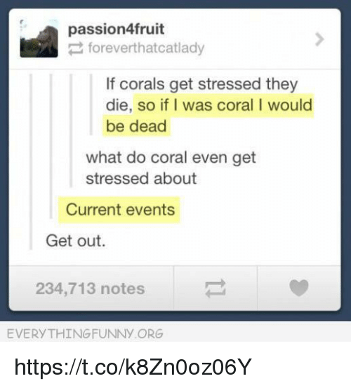 Current Events, Coral, and Org: passion4fruit  foreverthatcatlady  If corals get stressed they  die, so if I was coral I would  be dead  what do coral even get  stressed about  Current events  Get out.  234,713 notes  EVERYTHINGFUNNY ORG https://t.co/k8Zn0oz06Y