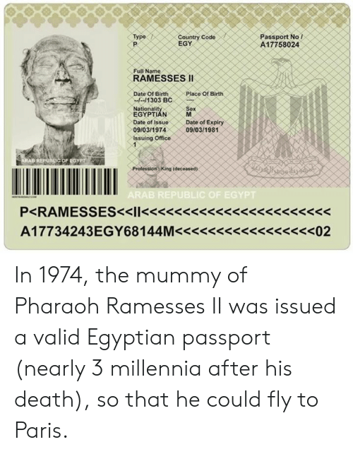 Passport No L A17758024 Type Country Code EGY Full Name