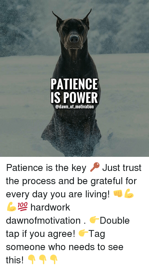 Patience Is Power Of Motivation Patience Is The Key  F0 9f 94 91 Just Trust The Process And Be Grateful For Every Day You Are Living