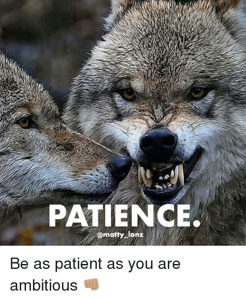 patience matty lonz be as patient as you are ambitious 15073320 patience lonz be as patient as you are ambitious 👊🏽 meme on me me