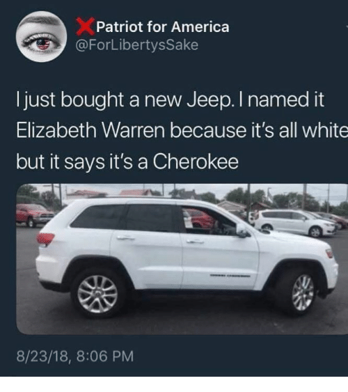 America, Elizabeth Warren, and Memes: Patriot for America  ForLibertysSake  Ijust bought a new Jeep. I named it  Elizabeth Warren because it's all white  but it says it's a Cherokee  8/23/18, 8:06 PM