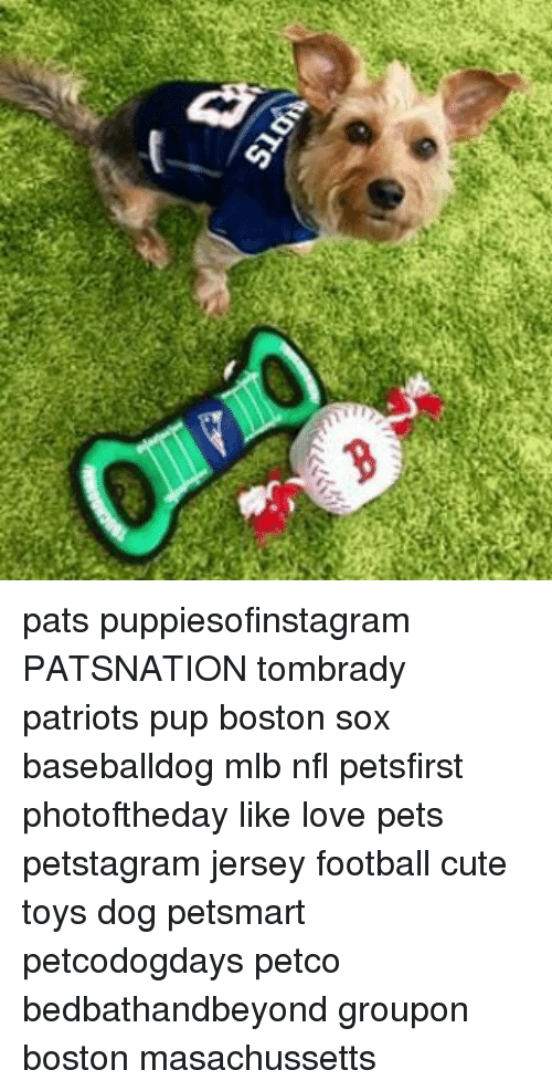 25 Best Memes About Mlb Nfl And Patriotic Mlb Nfl