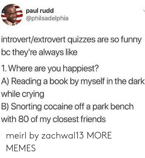 Crying, Dank, and Friends: paul rudd  @philsadelphia  introvert/extrovert quizzes are so funny  bc they're always like  1. Where are you happiest?  A) Reading a book by myself in the dark  while crying  B) Snorting cocaine off a park bench  with 80 of my closest friends meirl by zachwal13 MORE MEMES