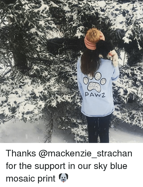 Memes, 🤖, and Sky: PAW Thanks @mackenzie_strachan for the support in our sky blue mosaic print 🐶