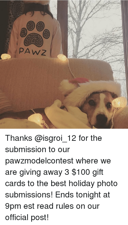 Memes, 🤖, and Est: PAW Z Thanks @isgroi_12 for the submission to our pawzmodelcontest where we are giving away 3 $100 gift cards to the best holiday photo submissions! Ends tonight at 9pm est read rules on our official post!