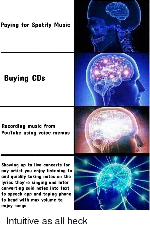 Paying for Spotify Music Buying CDs Recording Music From YouTube
