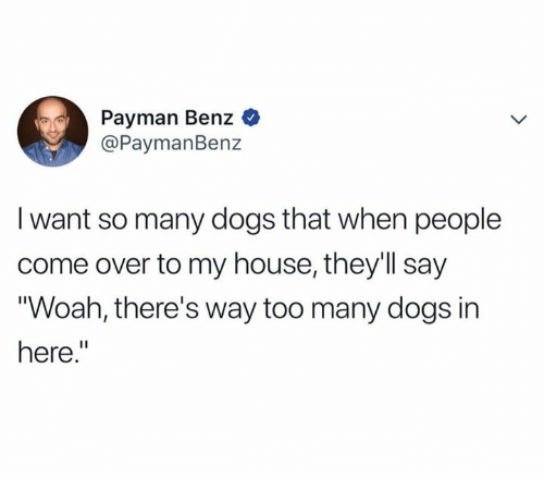 """Come Over, Dank, and Dogs: Payman Benz  @PaymanBenz  I want so many dogs that when people  come over to my house, they'll say  Woah, there's way too many dogs in  here."""""""